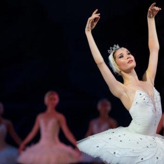 Wichita Grand Opera Swan Lake Featured Image