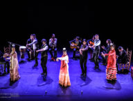 Compania Flamenco Wichita Grand Opera1