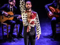 Compania Flamenco Wichita Grand Opera2