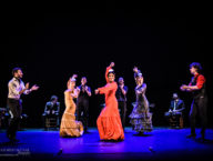 Compania Flamenco Wichita Grand Opera4