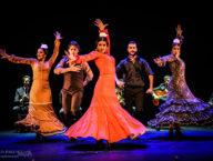 Compania Flamenco Wichita Grand Opera5