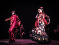 Compania Flamenco Wichita Grand Opera8