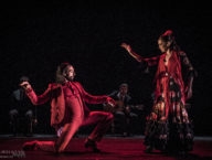 Compania Flamenco Wichita Grand Opera9